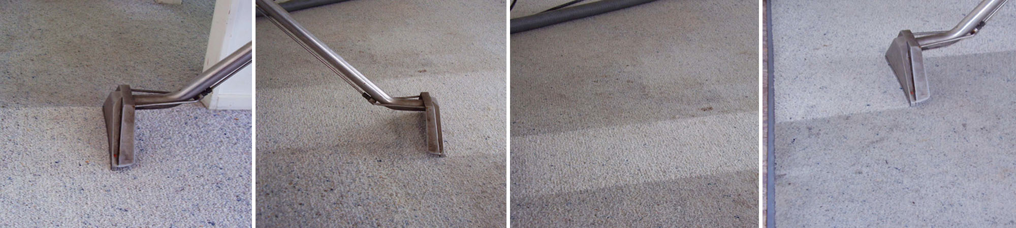 Carpet Cleaner Rotorua Cheap Carpet Cleaning Services Stains